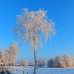 Winter Am Torfstich, Foto: Werner Heise